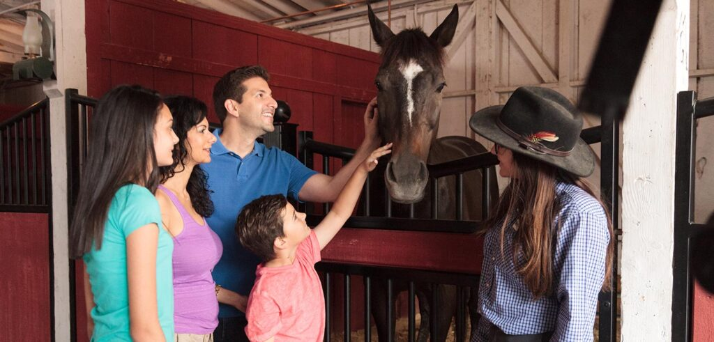 Some very friendly horses hang out at the Livery Stable.